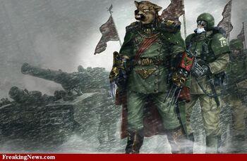 Wolf-Soldier