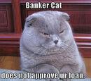 First Varless Bank of Purrfang