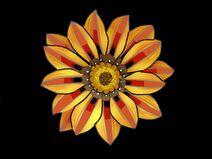 Molten Flower - Edited