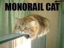 Monorail-cat