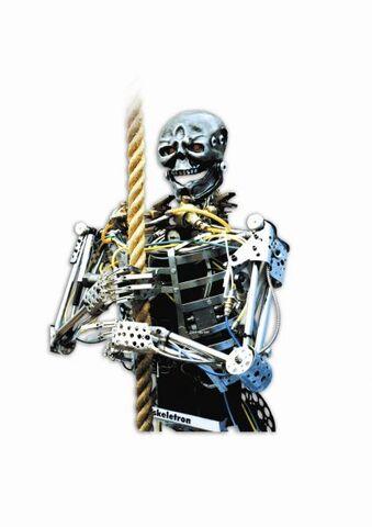 File:Skeletron.jpeg