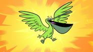 PelicanBB