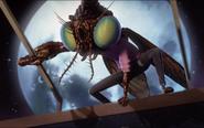 Baxter fly-Image