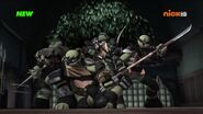The Dark Turtles