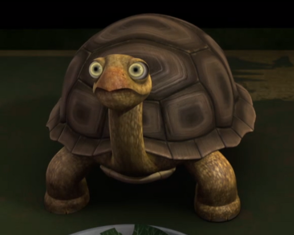 File:Rafs turtle eating.PNG
