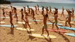 Surf Crazy (320)
