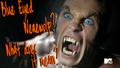Thumbnail for version as of 11:22, November 2, 2012