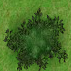 File:Diseased Tree.png