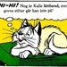 File:707609-tabby1 icon.png