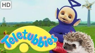 Teletubbies Hedgehogs - Full Episode