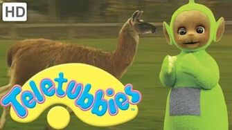 Teletubbies Llama - Full Episode