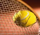 Tennis Database Wiki