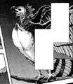 Harpy Eagle.png