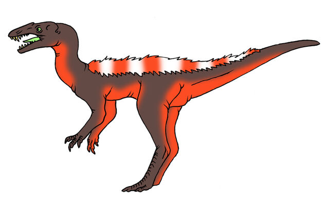 File:Vipergnathus.jpg