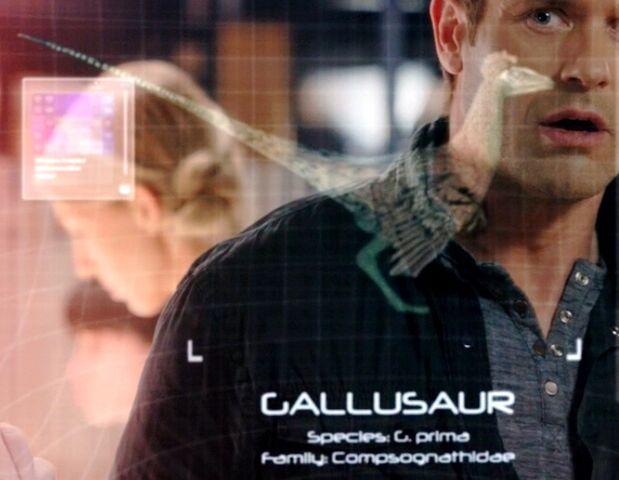 File:Gallusaur Info.jpg