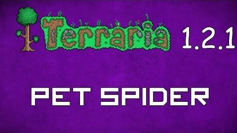 Pet Spider - Terraria 1.2