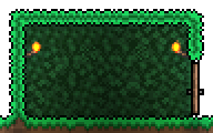 File:Grass Wall-placed2.png