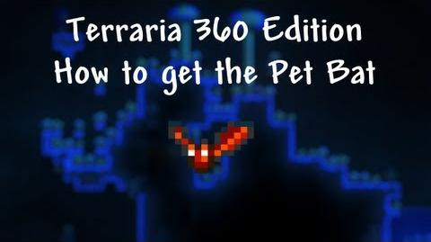Terraria Xbox - How to find the Pet Bat (Vial of Blood)