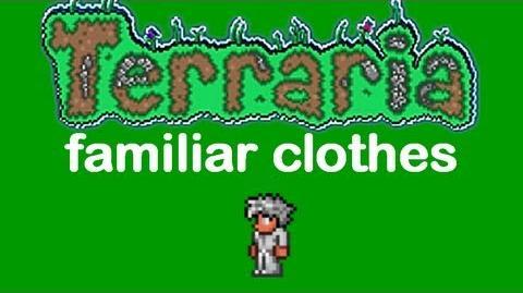 Terraria Familiar Clothes
