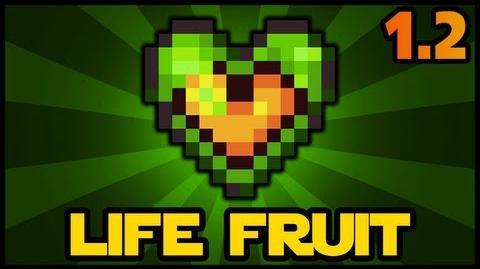 Life Fruit Terraria 1 2 Health Increase Terraria HERO