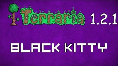 Black Kitty - Terraria 1.2