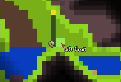 File:Lifefruit.png