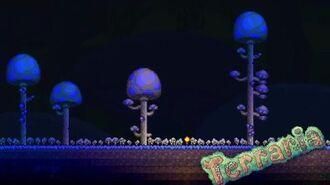 Mushroom Biome Aaron's Remix (Terraria)