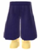 File:Basic gaucho pants.png