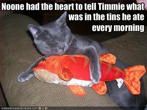 File:Funny animal captions-1.jpg