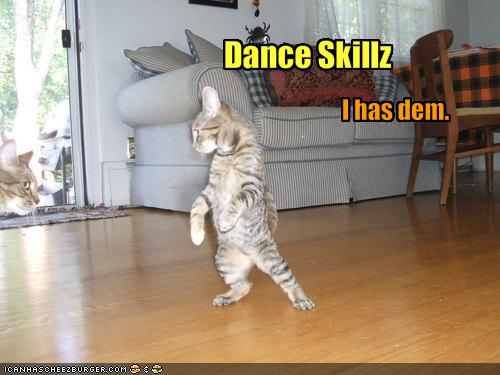 File:Funny-pictures-cat-has-dance-skills.jpg