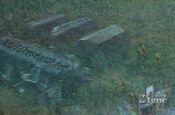 Mtimes MUTO RESEARCH Godzilla Trailer 2