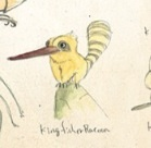 File:Kingfisherraccoon.jpg