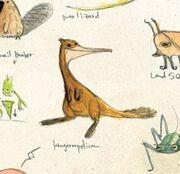 Kangaroopelican