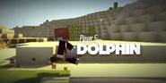 S7 - Dolphin