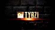 S11 - Tybzi