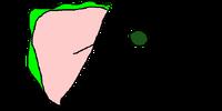 Zendbich