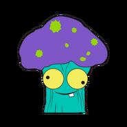 Shoccoli Aqua