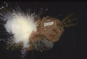 Reddwarf-exploded