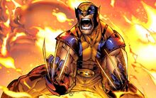 Wolverine's Immortality