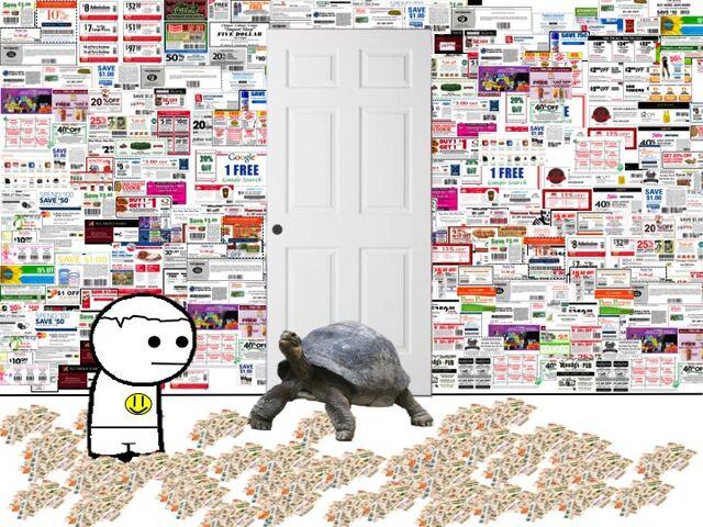 File:Tortoise.jpg