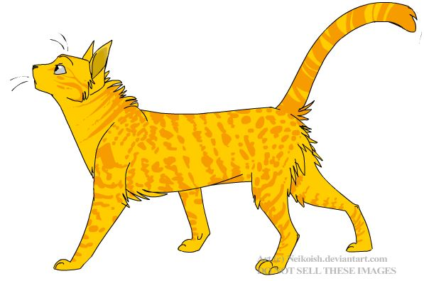 File:Cheetahfur.jpg