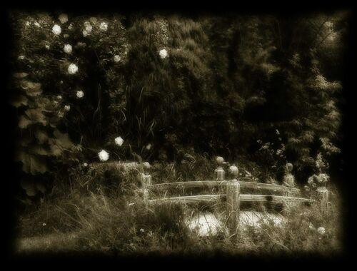 Calderbank garden