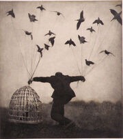 Cage-crows-doves-flying-flying-man-Favim.com-163505
