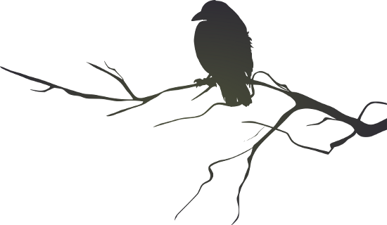 File:Crow (1).png