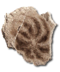 C028 Relics Past i05 Jellyfish cast