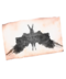 C152 Symmetrical inkblots i03 Rorschach inkblot 3