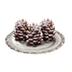 C466 Christmas treats i01 Chocolate cones