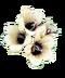 C176 Potion past i02 Four flowers belladonna