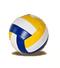 C401 Beach volleyball i04 Volleyball
