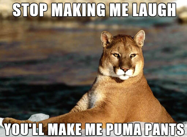 File:Puma.jpeg